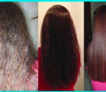 Nuevo tratamiento Oleios Hairlish